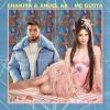 Shakira & Anuel AA – Me Gusta déja sur MixFeever
