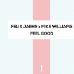 Felix Jaehn & Mike Williams - Feel Good