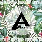 A.e.m - Dum Dum Dum