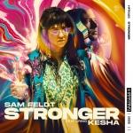 Sam Feldt - Stronger