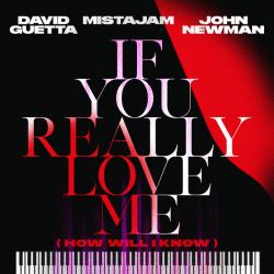 David Guetta x MistaJam x John Newman - If You Really Love Me déja sur MixFeever (Clip Video)