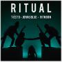 Pochette de Tiësto Jonas Blue Rita Ora - Ritual
