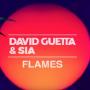 Pochette de David Guetta - Flames