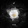 Pochette de Avicii - Without You